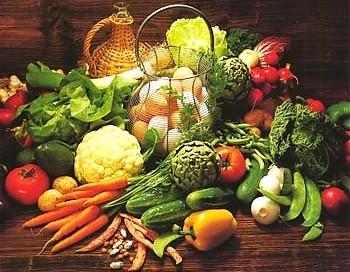 Zaroo, la campagna di finanziamento collettivo di Easy To Eat